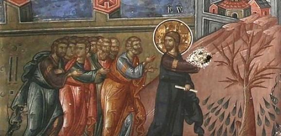 Lunea Săptămânii Patimilor – smochinul neroditor; Iosif, fiul patriarhului Iacob, prefigurarea lui Hristos