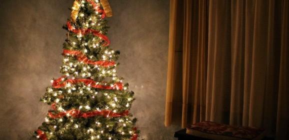 Bradul de Crăciun: o tradiție izvorâtă din Reformă și devenită universală